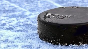 fantasy hockey pools